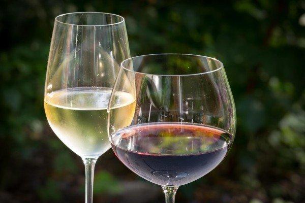 99 Rosas, o vinho orgânico da Casa Flora