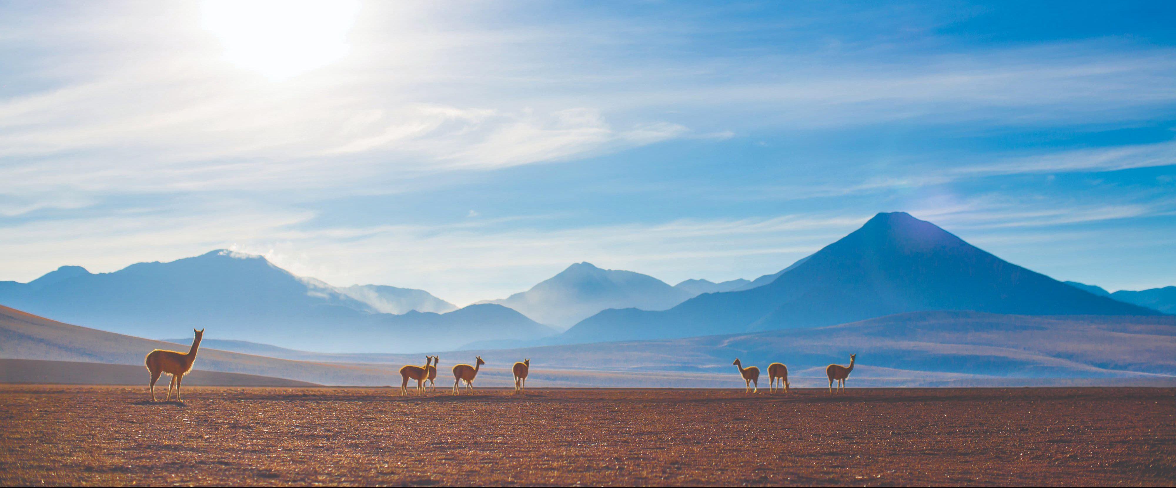 """Deserto do Atacama reserva paisagens exóticas, em uma viagem para """"outro mundo"""""""