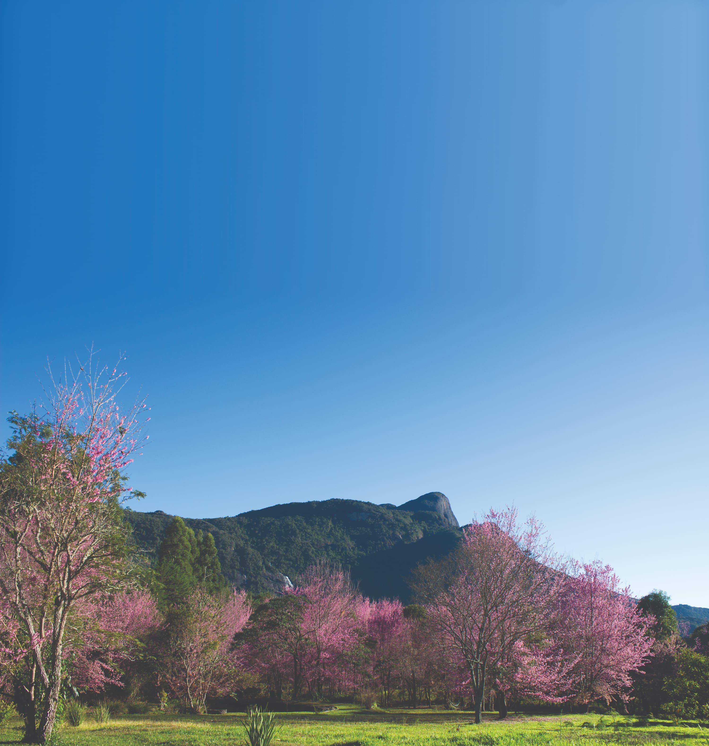Estada no Matutu, em Minas Gerais, permite imersão profunda na natureza