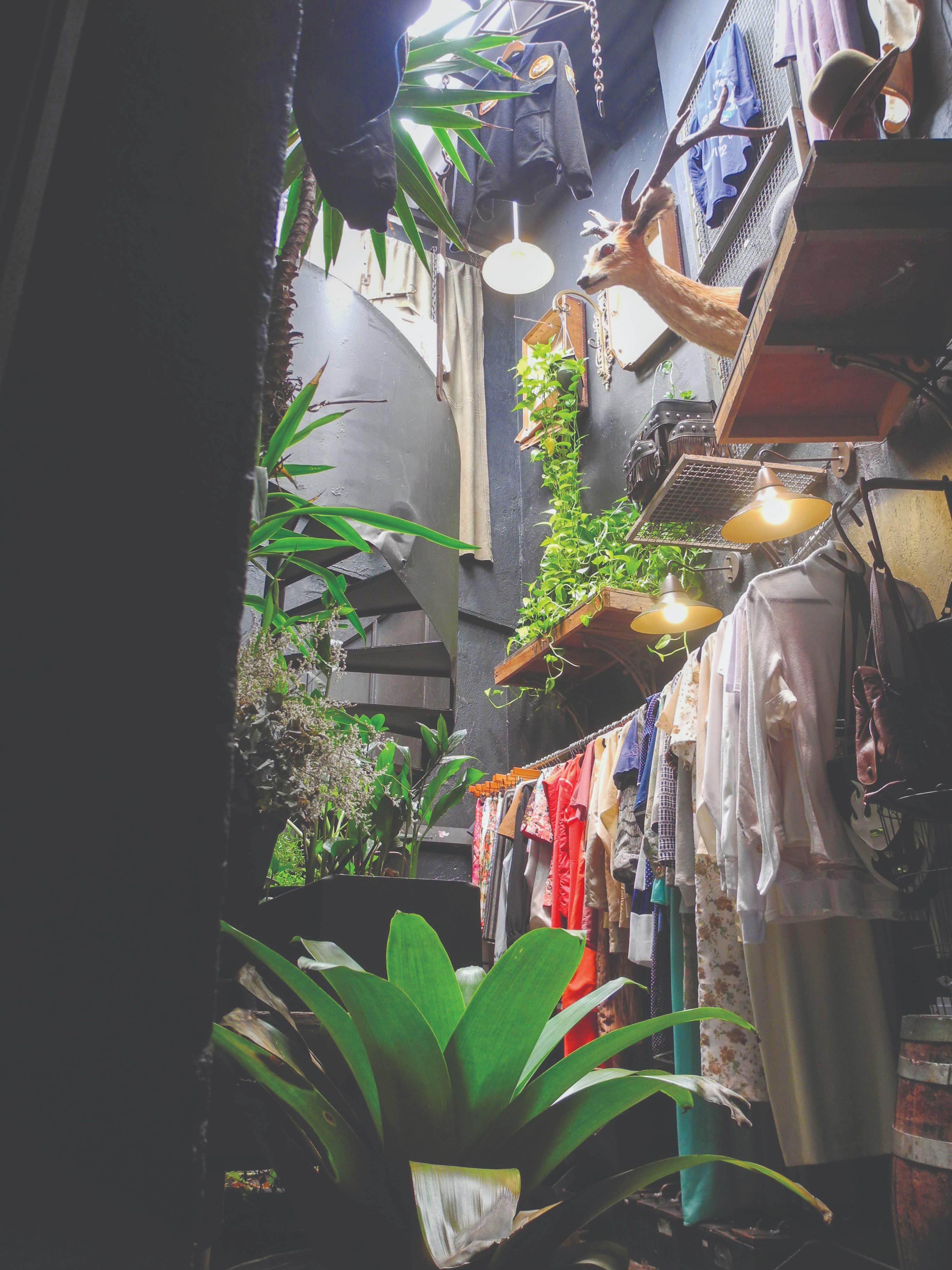 Com o consumo de peças usadas, os brechós trazem um estilo de vida mais sustentável