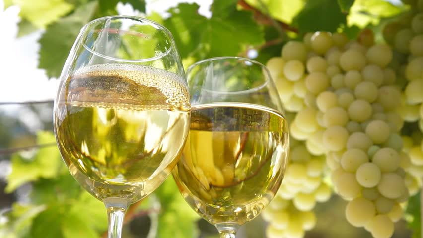 Os incríveis vinhos italianos do grupo Farnese