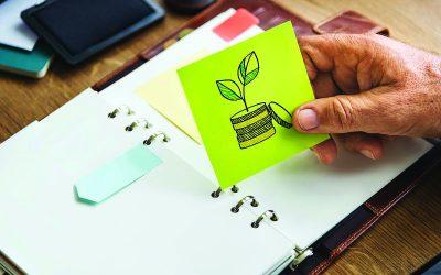 Sustentabilidade: Investidores já procuram empresas mais sustentáveis e transparentes para caminhar junto