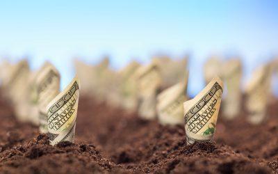 Sustentabilidade nas empresas é ponto chave para investimentos internacionais