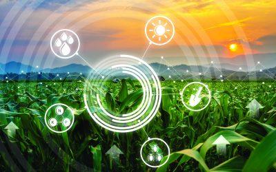 Startups brasileiras levam inovação, otimização de custos e sustentabilidade para o agronegócio