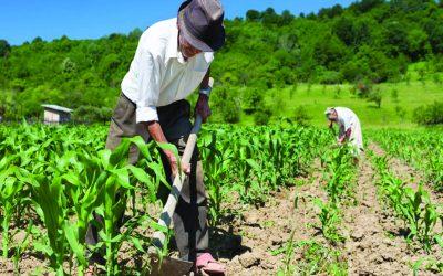 Atlas do Espaço Rural Brasileiro revela as característicasdos produtores e estabelecimentosagropecuários