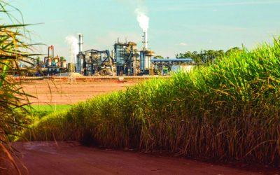 Demanda internacional por etanol e a alta nas exportações brasileiras