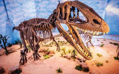 Dinossauros são as novas atrações de Itatiba