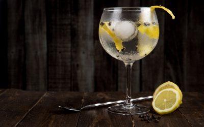 Da história às melhores receitas, conheça mais sobre o gim, bebida adorada pelos brasileiros