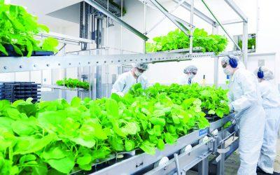 Produção de vacinas é a nova missão do agronegócio